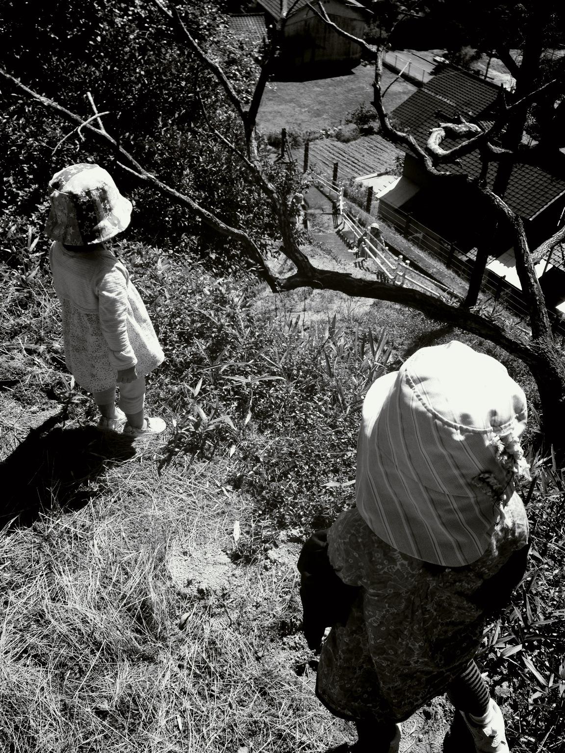 三箇山の木酢